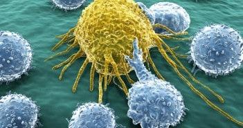 имунна система факти