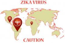 Зика-вирус