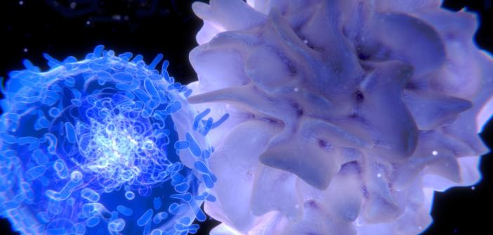 Имунен толеранс – имунната система в ролята й на домакин