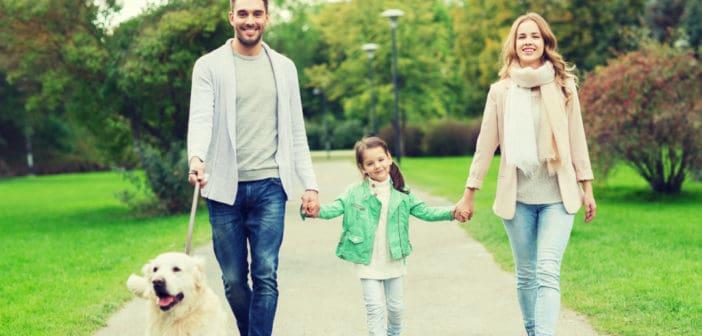 Слаб имунитет – 4 основни причини и 1 решение
