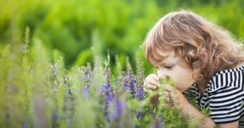 поленова алергия