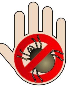 алергия към акари